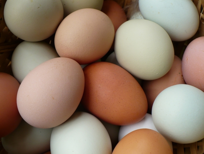 23 aurifil designer fresh eggs