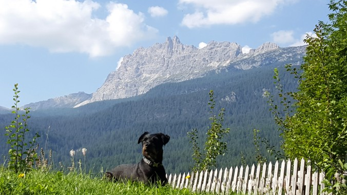 Gary, enjoying a sunny day on the Dolomites
