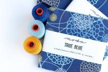 True Blue Marketing48