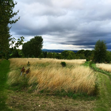 Jo's home in the Scottish countryside - @mybearpaw